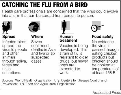 catching bird flu